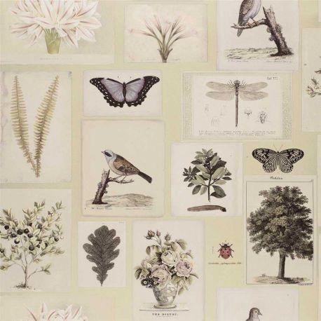 Papier peint Flora And Fauna Canvas, John Dorian