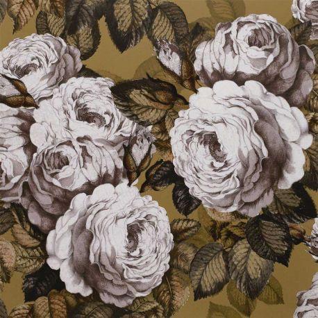 Papier peint The Rose Copper, John Dorian
