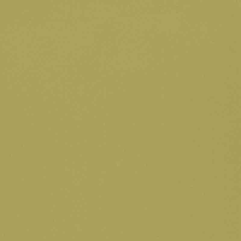 Olive FT2054/02